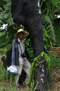 Dara, himself playing the role of tourist, pauses for a picture beneath the charred remains of a jungle tree that was burnt to make way for a rice field. The full picture is better, but I cropped it to make it easier to see his face.