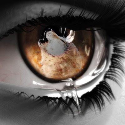http://3.bp.blogspot.com/_ehRAKwZaPSY/SZ1jq2Io9kI/AAAAAAAAFfY/C7LTVwZxWX8/s400/1212526285.jpg