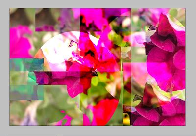 petuniad