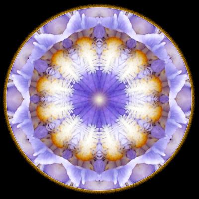 dancing in the light mandala
