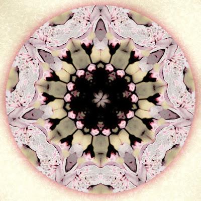 delicate love mandala