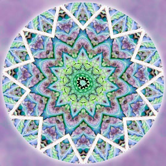 Forest Wisdom Mandala