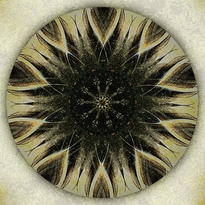 Crow Caws Gold Mandala