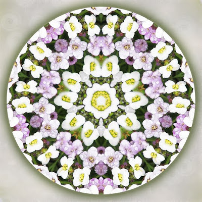 fairy dance mandala