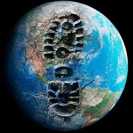Nao esmagues a Biodiversidade