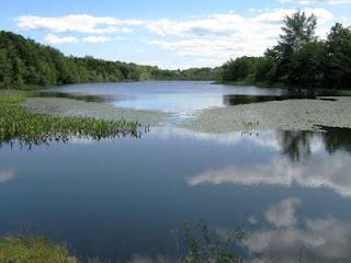 Oat Hill Lake in August