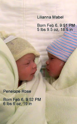 My Two New Nieces