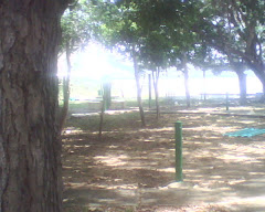 Parque Burro Negro