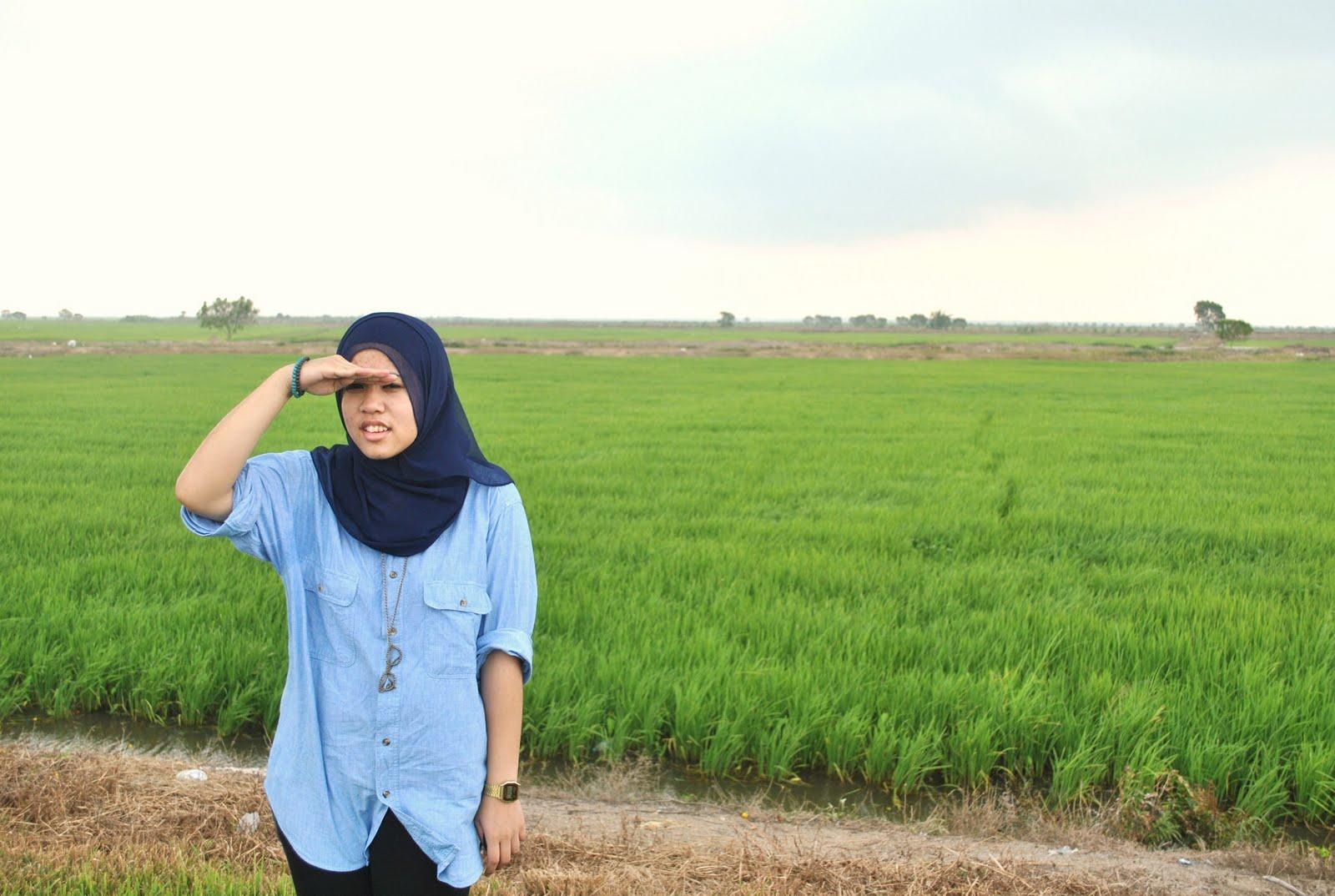 all about her: manjung ke sawah padi