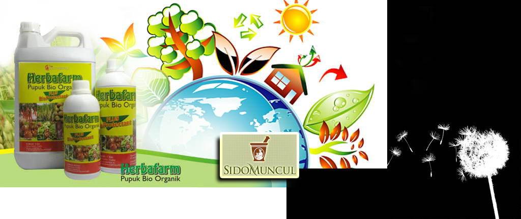 pupuk organik | budidaya tanaman organik | selamatkan bumi dengan pupuk organik