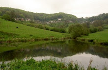 Ruscombe Valley