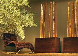 01 11 09 01 12 09 for Bambu arredamento