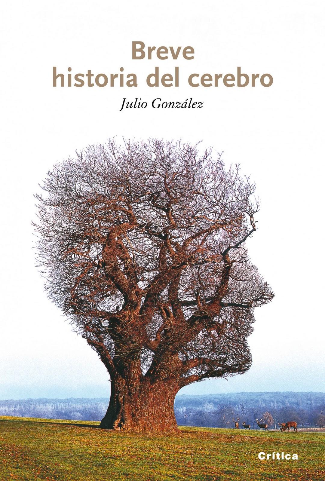 EL GRAN BAZAR: GUERRA Y PAZ / MALA HIERBA / BREVE HISTORIA