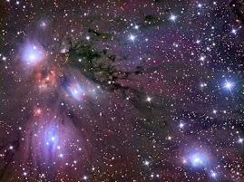 El destino está en las estrellas