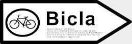Vamos pedalar por Braga!