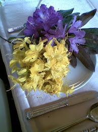 kumar çiçekleri