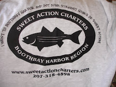 Sweet Action Charters T-Shirts