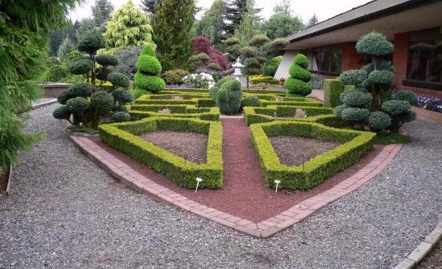 [bahçe+düzenlemesi_02.JPG]