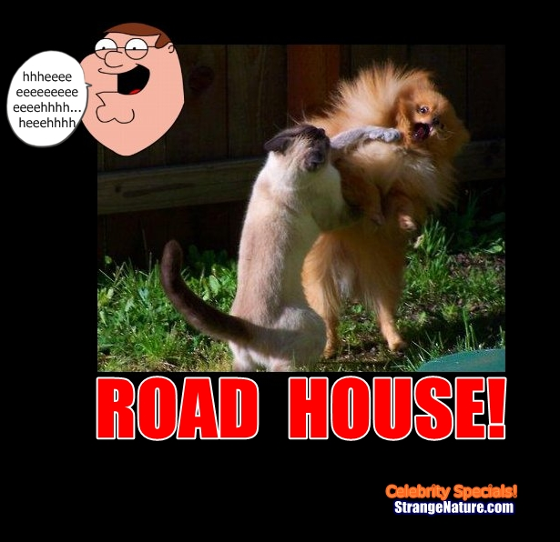 peter griffin roadhouse