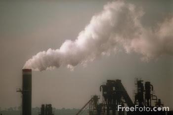 3º Jueves de Noviembre: Día Internacional del aire Puro