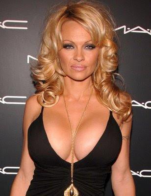 'Art' star Pamela Anderson