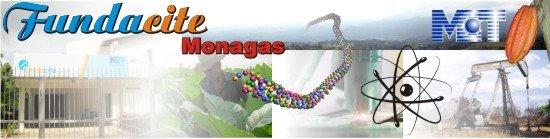 FUNDACITE MONAGAS