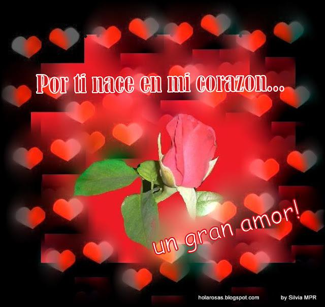 Imagenes De Amor: Amor - Frases Romanticas -Reencuentro- Tarjetas