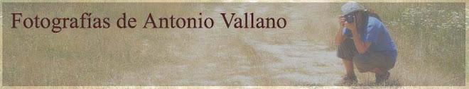 Fotografias de Antonio Vallano