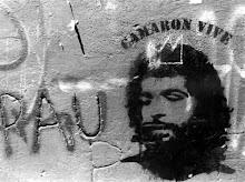 camarada camarón flamenco y revolución
