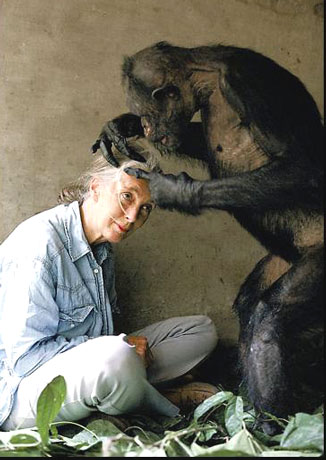 jane goodall is a british