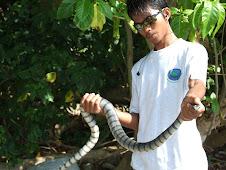 SNAKE ISLAND蛇岛