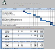 Presupuesto y Diagrama de Gantt del proceso de Planeación