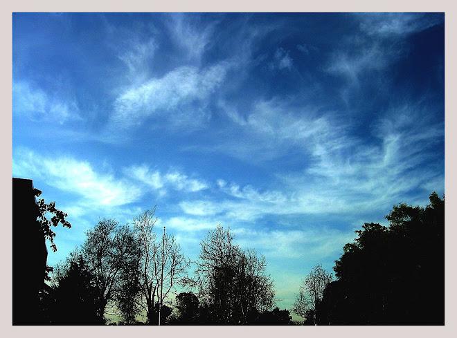 mây lang thang 2