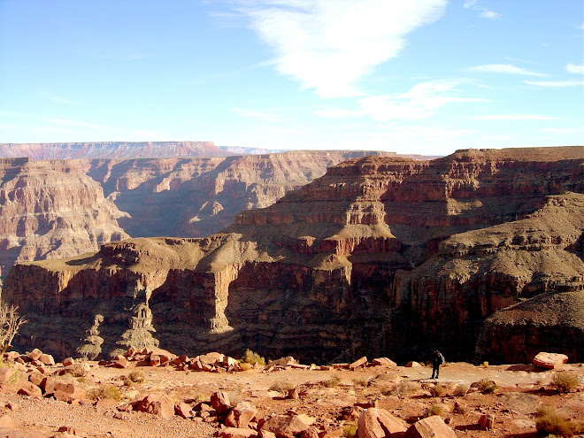 GRAND CANYON 5