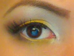 yellow+eye.jpg