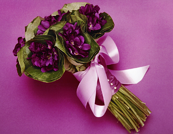 had a violet wedding bouquet like this one surrounded by leavesjust