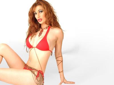 angelina jolie wallpaper bikini. Sexy Wallpapers - Desktop Hot