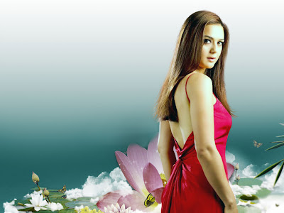 preity zinta wallpapers. wallpapers, Preity