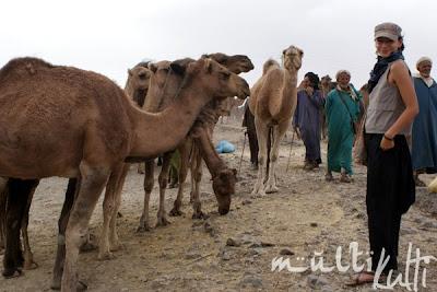 Maroko Imilchil