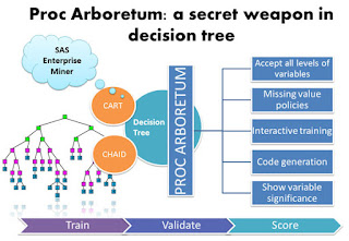 Proc Arboretum: a secret weapon in decision tree