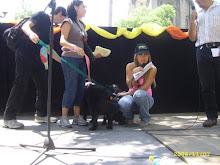 ADOPTATON 2008
