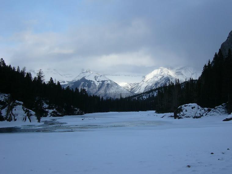 Bow river en hiver