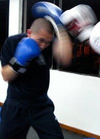 crazy monkey boxing