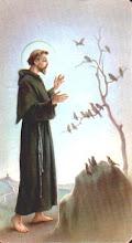 Saint Francis...