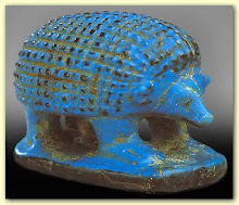 Egyptian Hedgehog