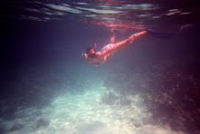 Woman diving in Maldives