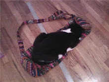 Frosti sleeping on top of a yoga bag on top of a ruler