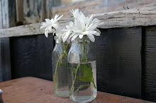 Daisies in bottles