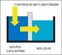 nanozine l 39 osmoseur ou comment rendre l 39 eau du robinet pure. Black Bedroom Furniture Sets. Home Design Ideas