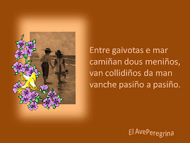 ENTRE GAIVOTAS E MAR